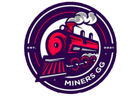 Netshoes Miners