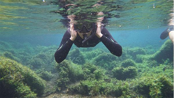Foto de mergulhadora com fundo de algas e vegetação.