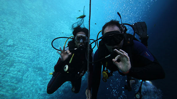 Aprensentadores fazendo o símbolo ok para em baixo do mar mergulhando.