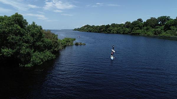 Foto do Rio Negro, cercado por vegetação e quatro pessoas praticando standup paddle