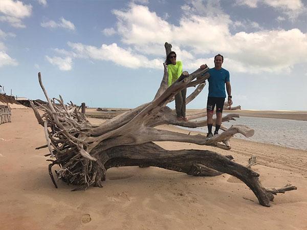 Conservai e uma mulher possam em cima de uma árvore caída na praia.