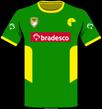 Camiseta de rúgbi de cor verde