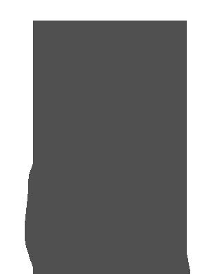 Imagem da pessoa lutadora Bate-Estaca