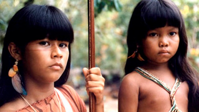 A indiazinha Tainá enfrenta uma quadrilha que comercializa animais em extinção, ao mesmo tempo em que procura a índia Catiti, de apenas seis anos, que fugiu da aldeia para tornar-se protetora do meio ambiente como ela.