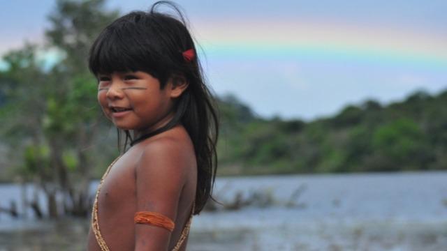 A Floresta Amazônica é invadida por piratas da biodiversidade, e a jovem índia Maya acaba tornando-se vitima dos bandidos, deixando órfã a bebê Tainá. A criança é abrigada entre as raízes de uma grande árvore e salva pelo velho e solitário pajé Tigê, que passa a cuidar dela e só a devolve para seu povo cinco anos depois, quando será escolhido o novo líder defensor da natureza. Por ser menina, Tainá é impedida de se apresentar, mas, pela herança da mãe, a última das guerreiras, e com o apoio da esperta menina da cidade Laurinha e do índio nerd Gobi, a indiazinha resolve encarar os malfeitores, desvendando o mistério de sua própria origem.
