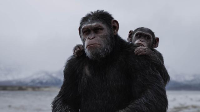 Após um ataque de seres humanos que deixa vários macacos mortos e feridos, César parte com um pequeno grupo em busca de vingança. Eles precisarão lutar contra o impiedoso coronel McCullough, o que irá determinar o futuro de suas espécies e do planeta.