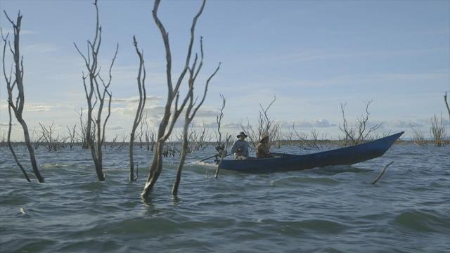 Cada um dos estados brasileiros banhados pelo rio São Francisco visto pelo olhar de um diretor diferente: às margens do rio encontram a cultura, a vida e a luta pela sobrevivência das comunidades ribeirinhas do