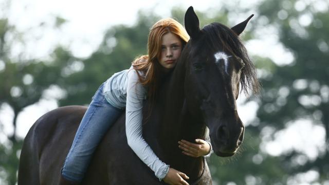 Mika é uma adolescente de 14 anos que sonha com o acampamento de verão, mas, como castigo, é enviada para a fazenda da avó. Ao chegar lá, ela conhece o jovem Sam e o cavalo selvagem Ostwind. Como ninguém consegue domar o cavalo, Mika decide ir ao estábulo durante à noite e desse encontro nasce um dom especial: Mika tem a capacidade de conversar com Ostwind e outros cavalos.
