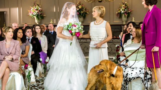 Bailey não tem muita sorte no amor. Apaixonada por animais, a professora herdou os cachorros dos seus últimos namorados. Ela só não imaginava que os cachorros revelariam o caminho para o seu grande amor.