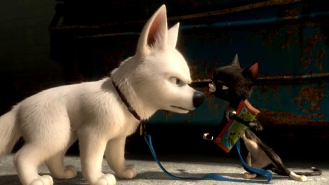 Bolt é um cachorro que estrela uma série de TV em que possui superpoderes. Sua companheira é a menininha Penny, com quem vive diversas aventuras. Só que Bolt não sabe que o mundo que o cerca é falso. Acredita que realmente possui dons especiais. Quando, nas gravações de um dos episódios, Penny é sequestrada pelo vilão da série, Bolt parte atrás dela, e vai descobrir muito mais do que esperava.