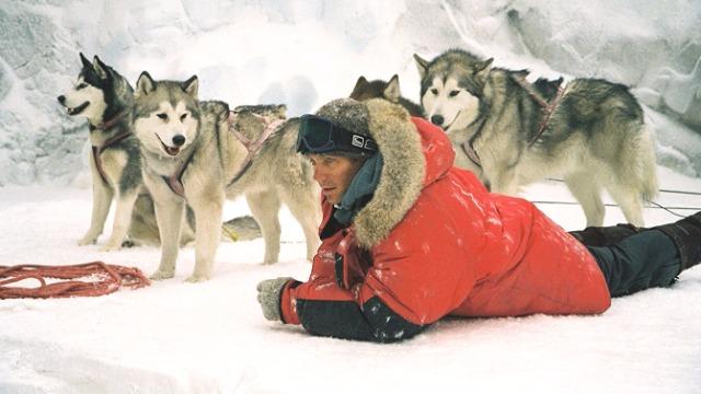 O guia Jerry Shepherd, o cartógrafo Charlie Cooper e o geólogo David McLaren fazem parte de uma expedição científica na Antártica. Um grave acidente e as perigosas condições meteorológicas obrigam a expedição a abandonar sua equipe de cães de trenó. Com isso, os valentes animais precisam enfrentar sozinhos o forte inverno da Antártida por seis meses, até que seja possível organizar uma nova missão para tentar resgatá-los.